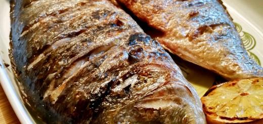 Grillad seabream fisk